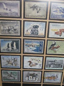 Federal Duck Stamps Winchester Collection 1934-1988 Framed/glass VERY NICE