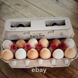 Henlay Bulk Printed Egg Cartons 250/Bundle Center is Blank for Your Stamp